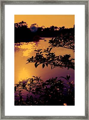 Florida Sunset Framed Print