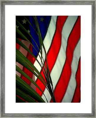 Floridamerica Framed Print