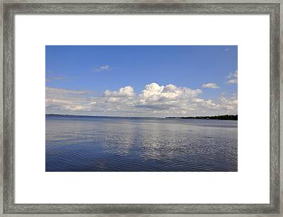 Floridian View Framed Print