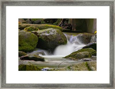 Flow Framed Print by Cindy Haggerty