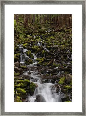Flow Of Life Framed Print by Mike Reid