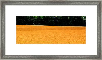 Flow Of The Field 3 Ae  Framed Print by Lyle Crump