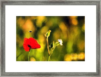 Flower And Bee Framed Print by Odon Czintos