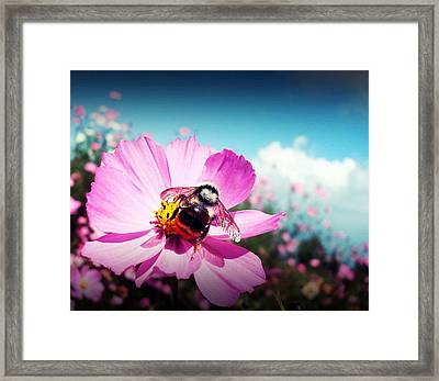 Flower And Company Framed Print by Sanjay Avasarala
