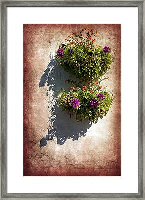 Flower Baskets Framed Print by Svetlana Sewell