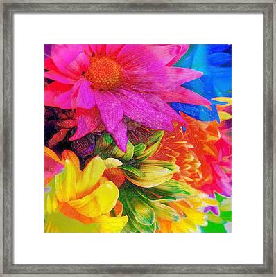 Flower Box Framed Print by Empty Wall