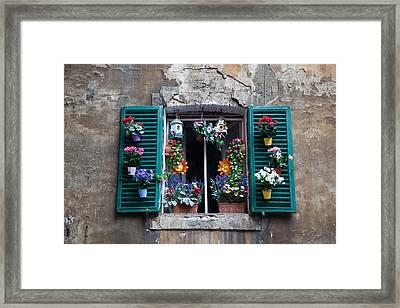 Flower Box Framed Print by Zack Stern