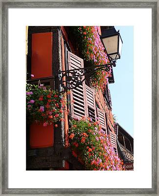 Flower Boxes And Shutters In Alsace Framed Print by Christopher Mullard
