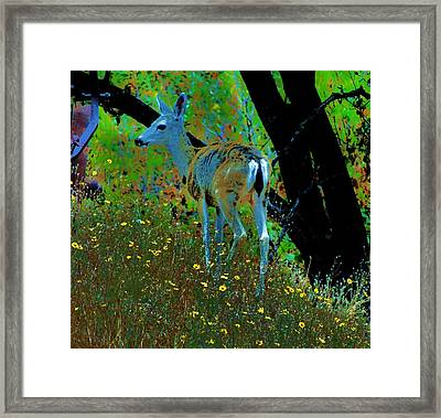 Flower Child Framed Print by Helen Carson