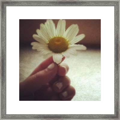 #flower #daisy #white #yellow #nails Framed Print