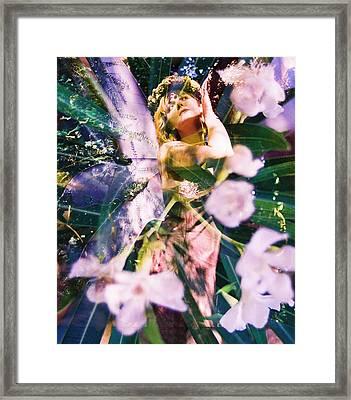 Flower Faerie Dreams Framed Print by Cyoakha Grace
