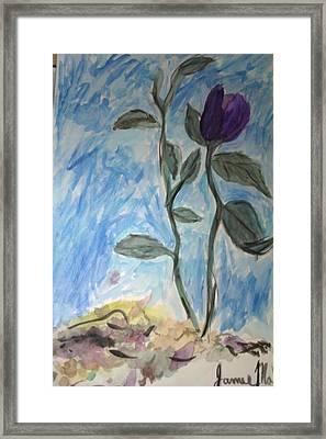 Flower Framed Print by Jamie Mah
