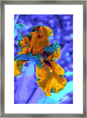 Flower Moderna Framed Print by Rick Bragan