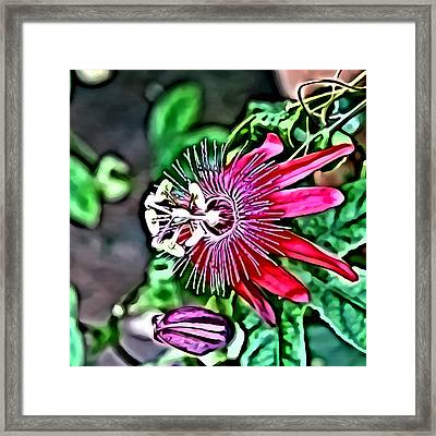 Flower Painting 0001 Framed Print by Metro DC Photography