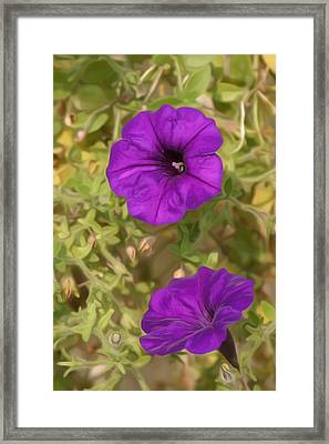 Flower Painting 0006 Framed Print by Metro DC Photography