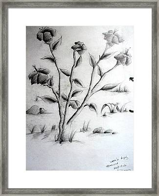 Flower Plant Framed Print by Tanmay Singh