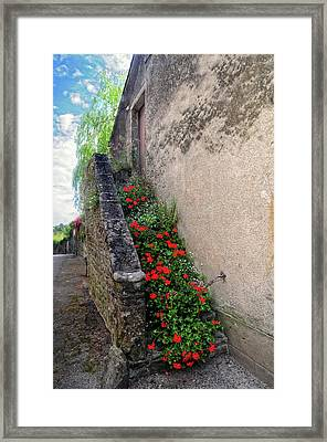 Framed Print featuring the photograph Flower Stairway by Dave Mills