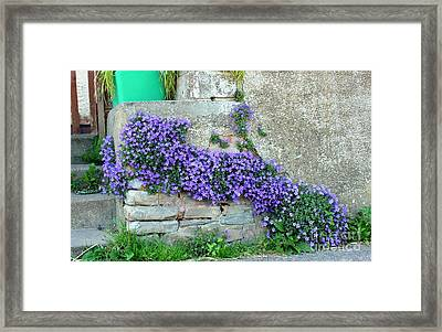 Flowered Steps Framed Print by Rene Triay Photography