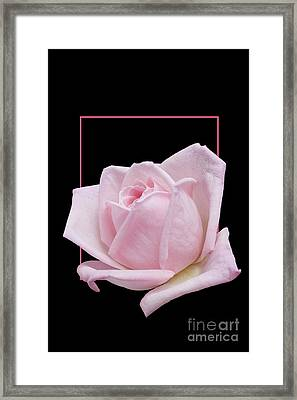 Flowerin Frame -10 Framed Print