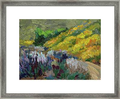 Flowering Meadow Framed Print by Diane McClary