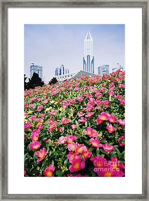 Flowers And Architecture Around Peoples Square Framed Print by Jeremy Woodhouse