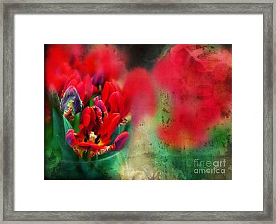 Framed Print featuring the photograph Flowers by Ariadna De Raadt