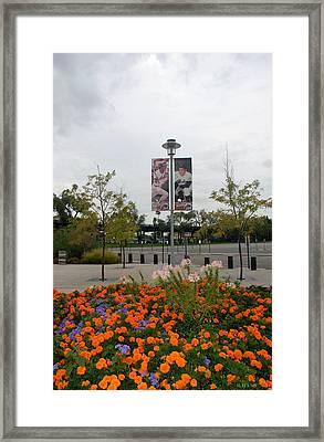 Flowers At Citi Field Framed Print
