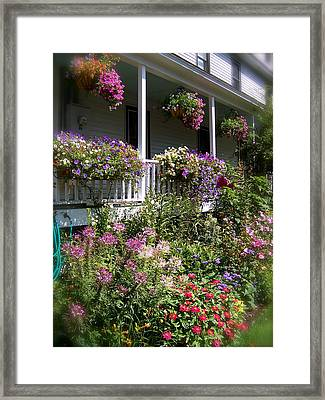 Framed Print featuring the photograph Flowers Everywhere by Robin Regan