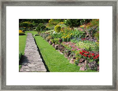 Flowers In Park Framed Print by Atiketta Sangasaeng