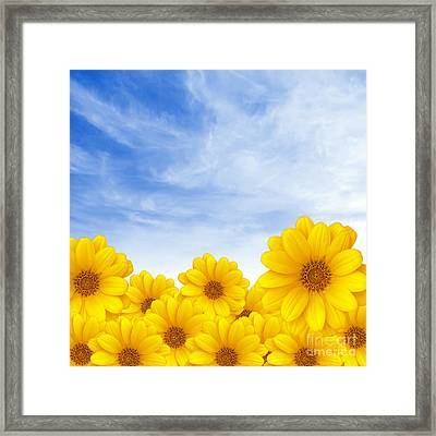 Flowers Over Sky Framed Print by Carlos Caetano