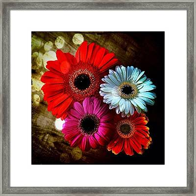 Flowers Part 3 Framed Print by Andre Brands