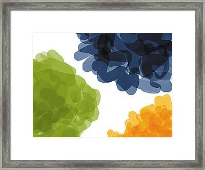 Flowers Framed Print by Robert Klein