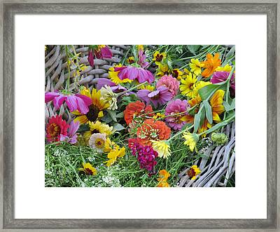 Framed Print featuring the photograph Flowers by Tina M Wenger