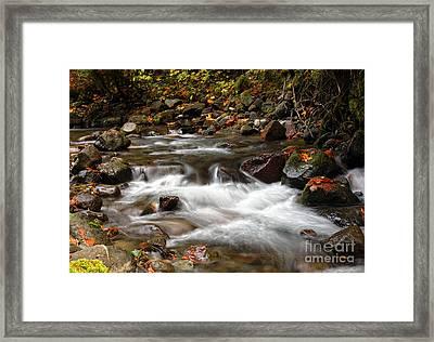 Flowing Framed Print by Billie-Jo Miller