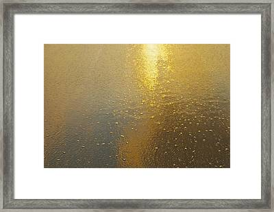Flowing Gold 7646 Framed Print by Michael Peychich