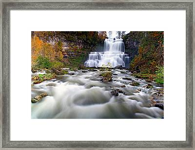 Flowing Framed Print by Mitch Cat