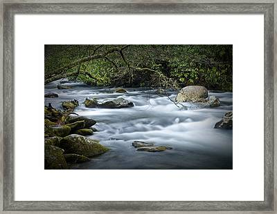 Flowing Stream In The Smokey Mountains No.312 Framed Print by Randall Nyhof