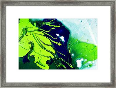 Fluidism Aspect 185 Photography Framed Print by Robert Kernodle