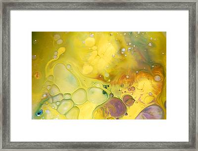 Fluidism Aspect 19 Photography Framed Print by Robert Kernodle