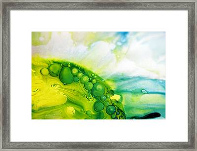 Fluidism Aspect 35 Photography Framed Print by Robert Kernodle