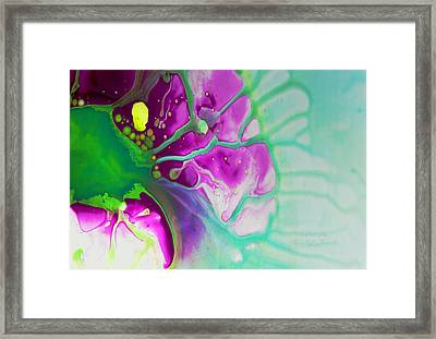 Fluidism Aspect 524 Photography Framed Print by Robert Kernodle