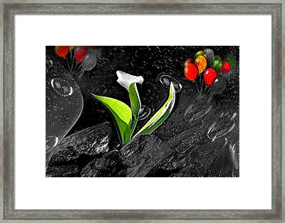 Fly-2- Framed Print by Manfred Lutzius