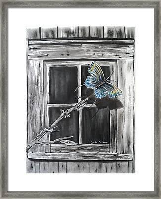 Fly Away Free Framed Print by Carla Carson