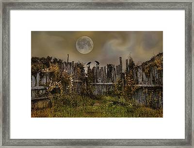 Fly Me To The Moon Framed Print by Robin-Lee Vieira
