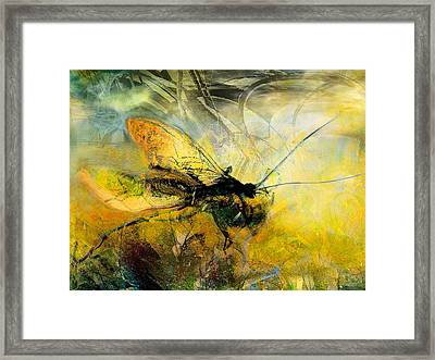 Fly On The Wall Framed Print by Anne Weirich