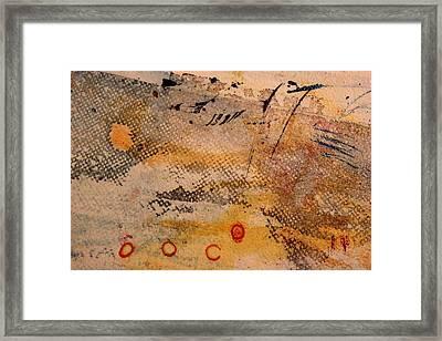 Flying Crane Framed Print