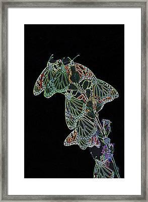 Flying Diamonds Framed Print by Rick Rauzi