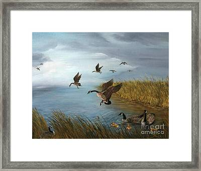 Flying Geese Framed Print