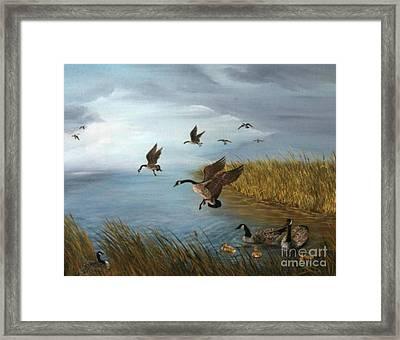 Flying Geese Framed Print