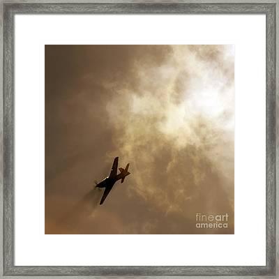 Flying High Framed Print by Angel  Tarantella